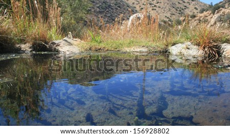 Water surface at Deep Creek Hot Springs, California - stock photo