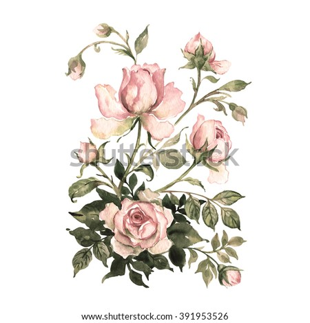 Watercolor a bouquet of roses with buds-1.Vintage, retro. - stock photo