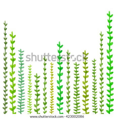 Watercolor Background: Different fern