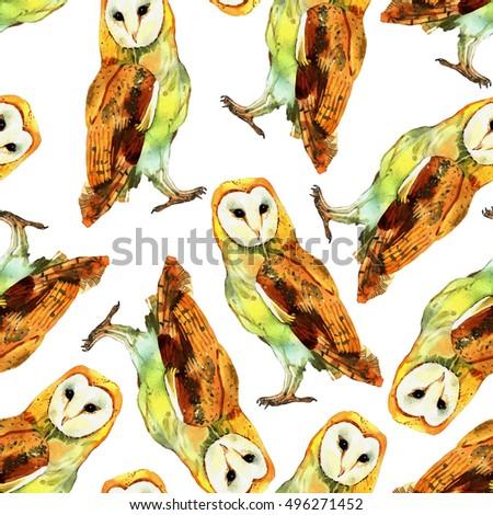 Watercolor Barn Owl Hand Painted Illustration Stock Illustration