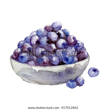 Watercolor. berry blueberries. hand drawn on white - stock photo