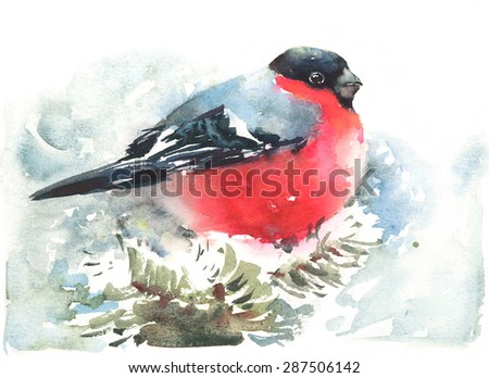 Watercolor Bird Bullfinch Winter Christmas Hand Painted Greeting Card Illustration  - stock photo