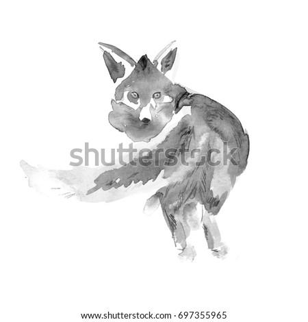 Watercolor Black White Fox Watercolor Animal Stock ...