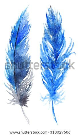 Watercolor blue bird feather pair set isolated