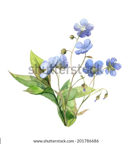 Watercolor blue little meadow flowers set with green leaves