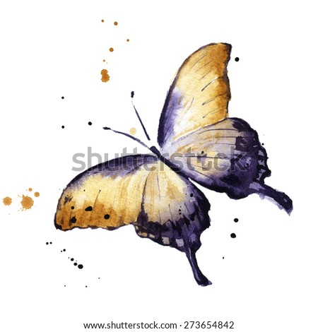 Watercolor butterfly - stock photo