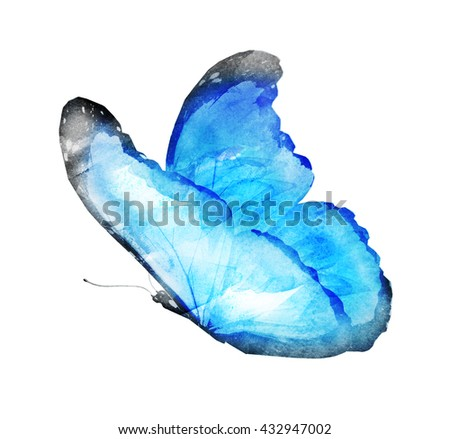 Watercolor butterfly on white background - stock photo