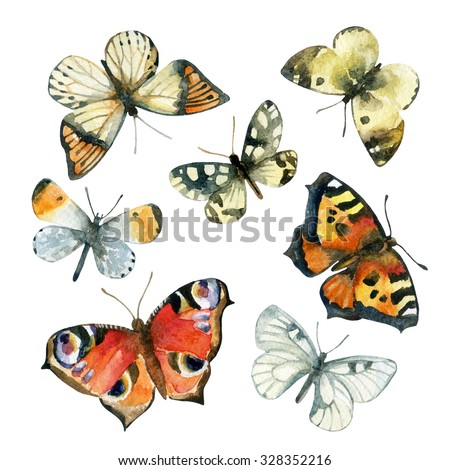Watercolor butterfly set. Hand painted butterflies isolated on white background - stock photo