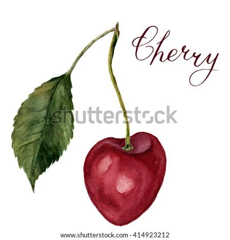 """Watercolor cherry with leaf and lettering """"Cherry"""". Hand drawn food illustration on white background. For design, textile and background. Realistic illustration. - stock photo"""