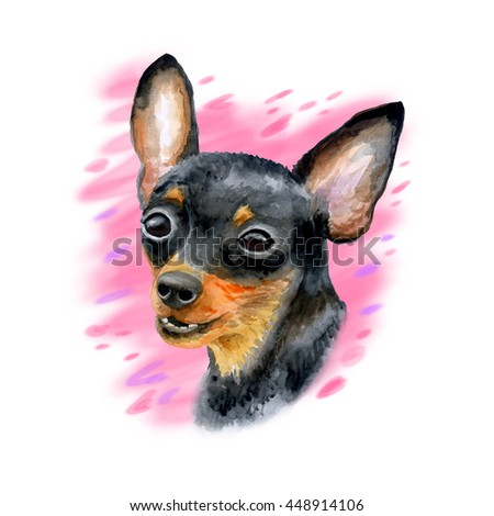 Watercolor closeup portrait of cute Prague Ratter or Prazsky krysarik breed dog isolated on white background. Shorthair small smooth dog portrait. Hand drawn home pet. Greeting card design. Clip art