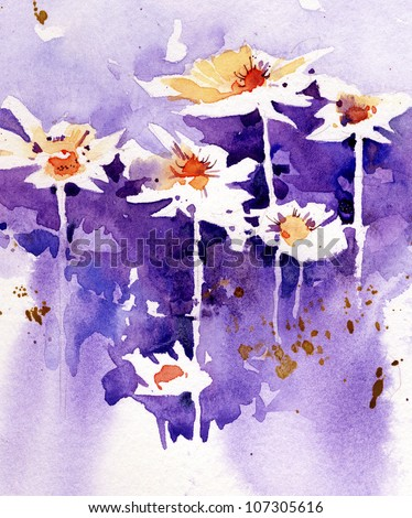 Watercolor daisies illustration - stock photo