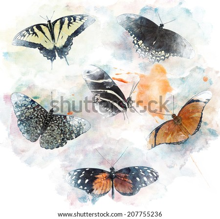 Watercolor Digital Painting Of  Butterflies - stock photo