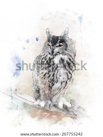 Watercolor Digital Painting Of   Perching Owl - stock photo