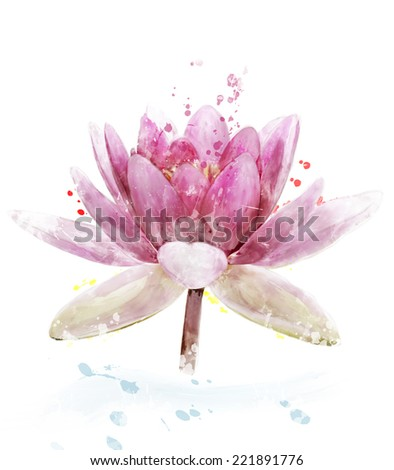 Watercolor Digital Painting Of Pink Waterlily Flower - stock photo
