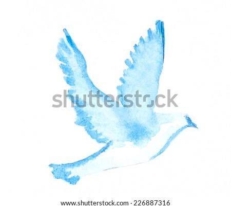 Watercolor dove  - stock photo