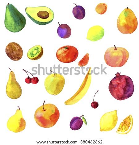 watercolor drawing fruits, hand drawn vector illustration - stock photo