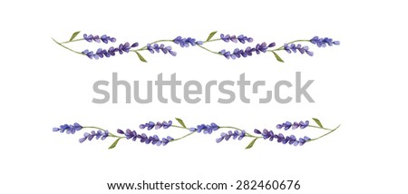 Watercolor floral borders of lavender flowers  isolated on white background - stock photo