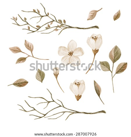 Watercolor floral elements set. Branches, leaves and flowers hand drawn. Watercolor illustration in retro style - stock photo