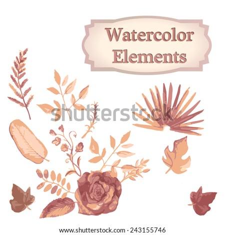 watercolor floral elements set - illustration - stock photo
