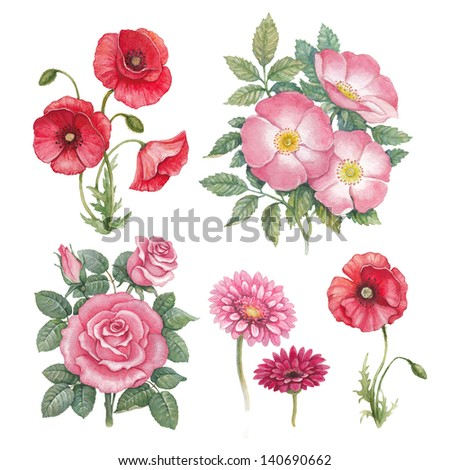 Watercolor flowers collection - stock photo