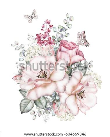 butterflies stock images royaltyfree images amp vectors
