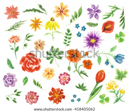 Watercolor flowers set. Elegant painterly flowers on white background for decoration, celebration and more. Summer flora. - stock photo