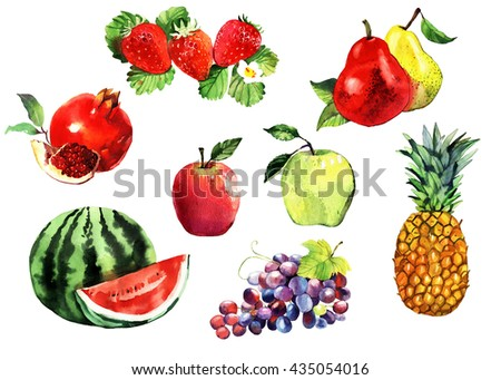watercolor fruits set, apples, grapes, pineapple, pear, pomegranate, watermelon, strawberry, hand painted illustration isolated on white background - stock photo