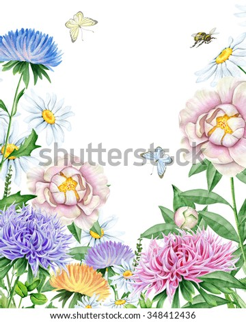Watercolor garden with asters, peonies, chamomiles - stock photo