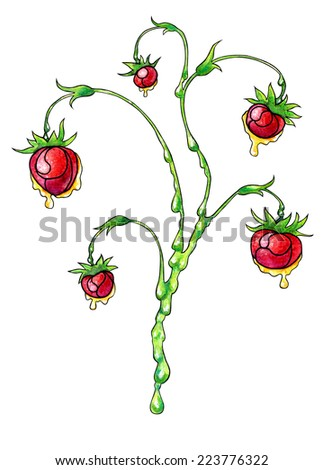 Watercolor hand drawn stylized branch of wild strawberry with flowing honey. - stock photo