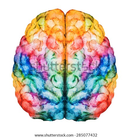 watercolor illustration of multicolored bright brain, abstraction - stock photo