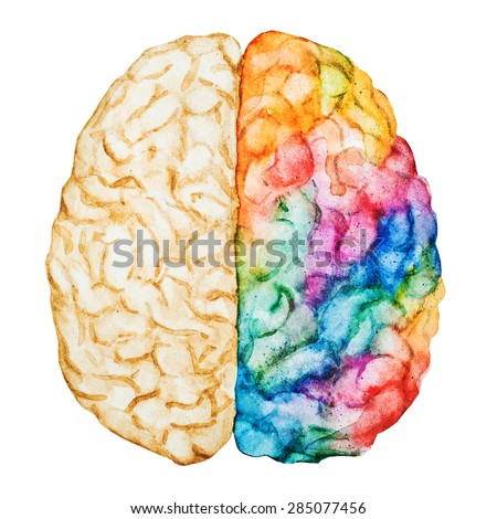 watercolor illustration of multicolored bright brains two hemispheres, abstraction - stock photo