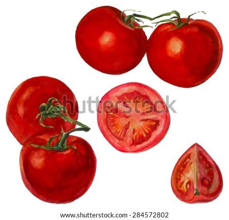 Watercolor illustration tomato - stock photo