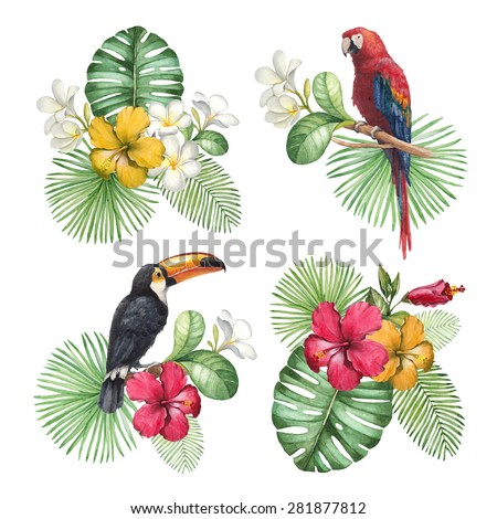 Watercolor illustrations of tropical flowers and birds - stock photo