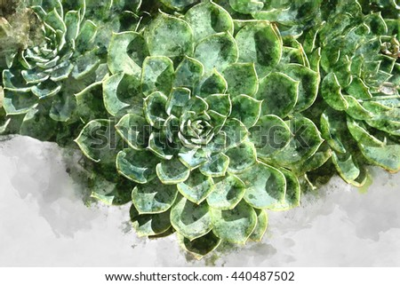 Watercolor image of Green cactus plant. - stock photo
