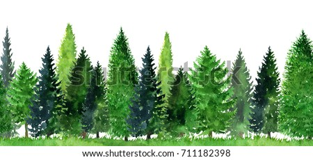 watercolor landscape fir trees abstract nature stock illustration