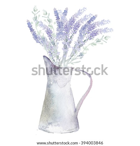 Watercolor lavender in a metal Jug. Isolated on a white background - stock photo