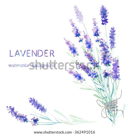 Watercolor lavender pattern and seamless background. Ideal for printing onto fabric and paper or scrap booking. Hand painted. Raster illustration.
