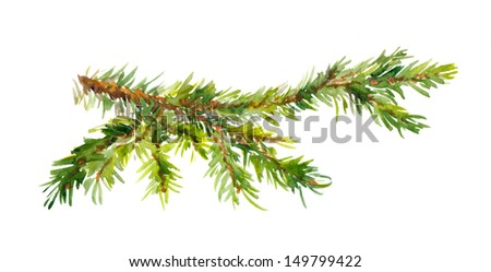 Watercolor painted pine branch - stock photo