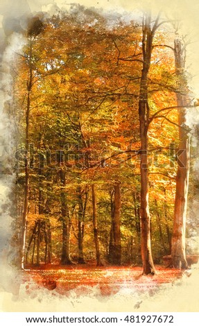 Watercolor painting of Beautiful landscape image of forest covered in Autumn Fall color