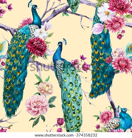 peacock stock images royalty free images vectors shutterstock