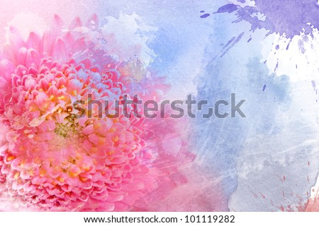 Watercolor pink flower, for backgrounds or textures - stock photo