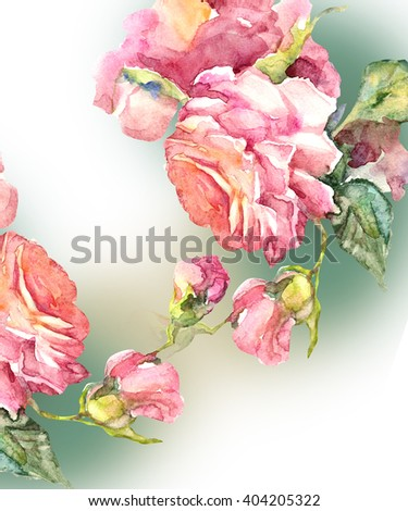 Watercolor pink Roses. Hand painting illustration, isolated on  a white background. - stock photo