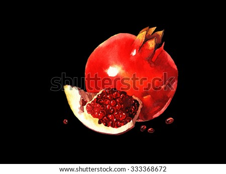 watercolor pomegranate , raster illustration isolated on black background