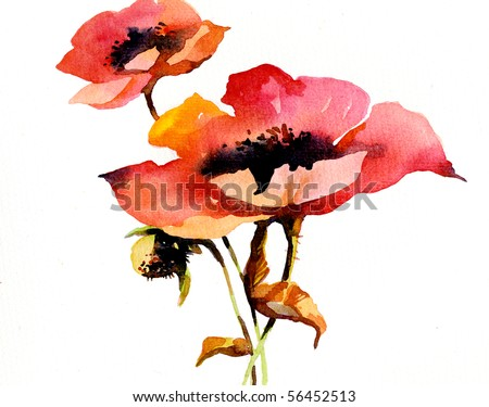 Watercolor poppies - stock photo