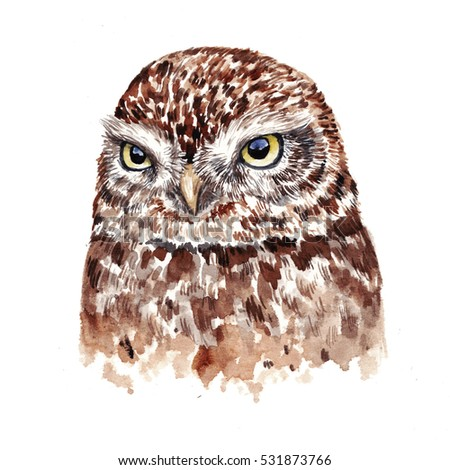 Watercolor Funny Kids Illustration Owl Hand Stock ...