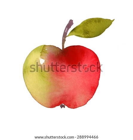 Watercolor Red and Green Apple with Stem and Leaf Hand Drawn Illustration isolated on white background