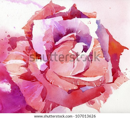 Watercolor rose illustration - stock photo