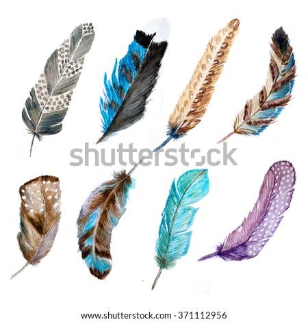 watercolor set feathers, bird feathers, design element boho style - stock photo