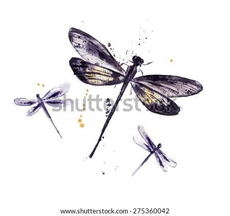 Watercolor set of dragonflies - stock photo