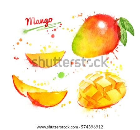 Watercolor set of illustrations of mango, whole and sliced with leaf and paint smudges and splashes.
